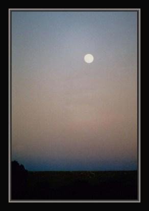 horizonmix6t-nuit-hoggart
