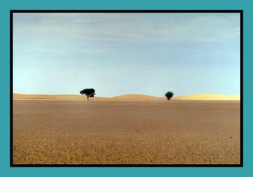 horizonmix6t-traversée-désert