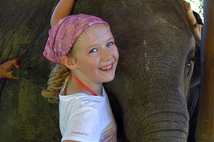horizon-mix6t-elephant-retirement-park6