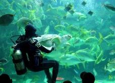horizon-mix6t-kuala-lumpur-aquarium1