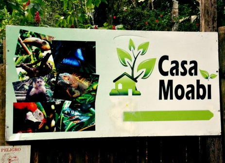 horizon-mix6t-casa-moabi