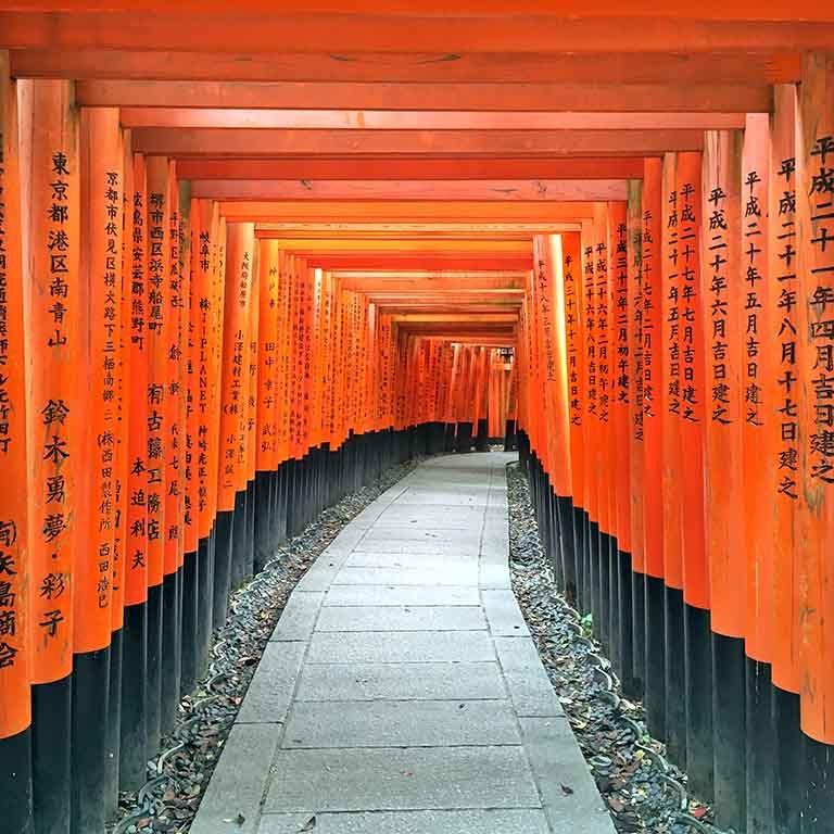 Fushimi-Inari Taïsha le sanctuaire aux 30 000 torii